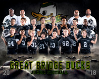 2018 Great Bridge Ducks