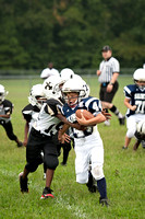 2012 Nansemond Suffolk Tiny Mite Saints