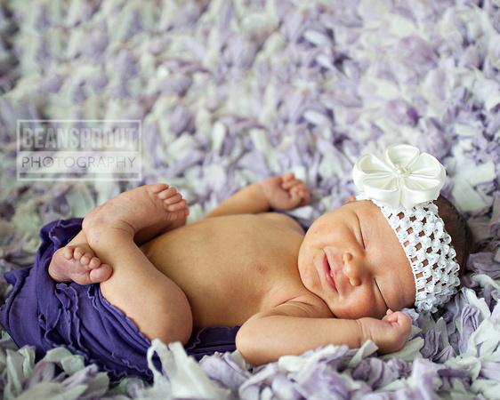 Miss A   Suffolk VA Newborn